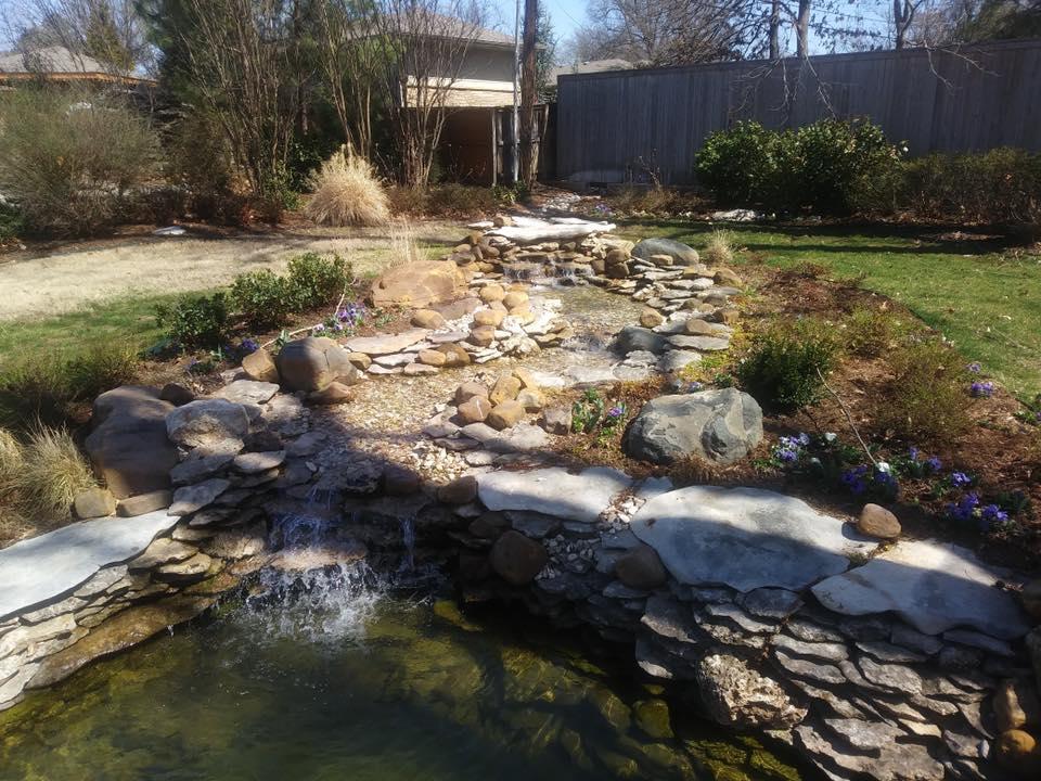 Backyard Stream